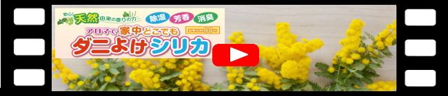 YouTubeダニよけシリカ,バナー